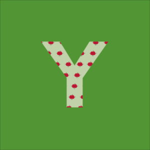 Der Green-Bag Buchstabe Y